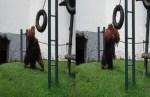 Si Gorila Yang Lucu